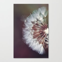 Dreamers and Wishers Canvas Print