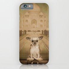 Chihuahua the Yoga Doga Dog iPhone 6s Slim Case