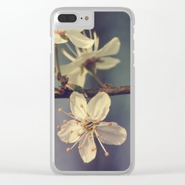 Cherry blossom tree in the blue Clear iPhone Case