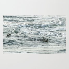 Harbor Seal, No. 2 Rug