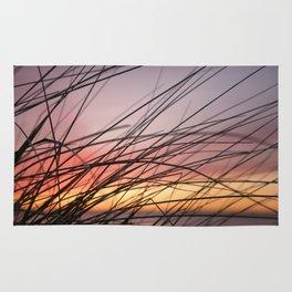Grasses in the rainbow light of sunset Rug