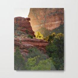 Glowing Tree at Sedona Bell Rock Trail Metal Print