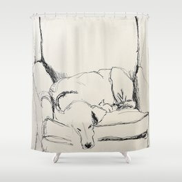 Elwood in a chair Shower Curtain