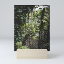 Hidden Jungle River Mini Art Print