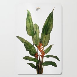 Bird of Paradise Plant on White Cutting Board