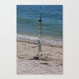 Wishin' I Was Fishin' Canvas Print
