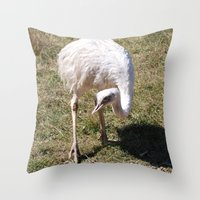 ostrich Throw Pillows featuring Ostrich by Sarah Shanely Photography