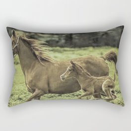 Mama And Baby Horse In The Field  Rectangular Pillow