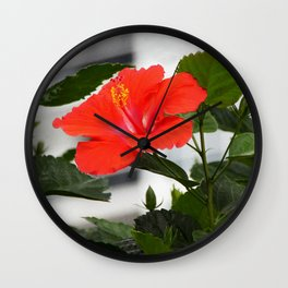 red hibiscus Wall Clock
