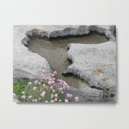 Tidal Pools and Flowers Metal Print