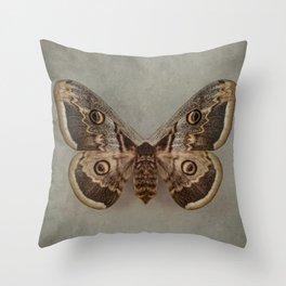 Saturnia pyri Throw Pillow