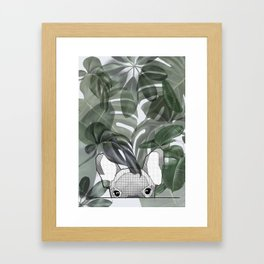 Hinding Frenchy - grey Framed Art Print