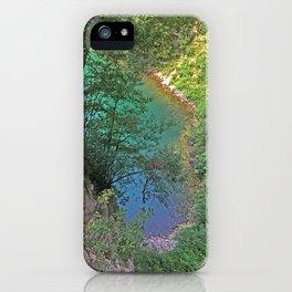 Paradise Cove iPhone Case