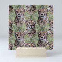 Allover Cheetah Mini Art Print