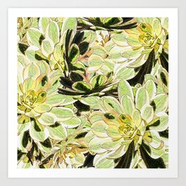 Yellow Desert Echeveria Pattern Art Print