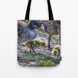 Taking Care of Goslings Tote Bag