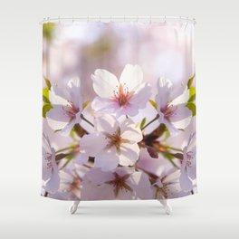 Cherry Blossom Ray of Light Shower Curtain