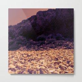 Seashell beach in monochrome Metal Print