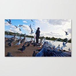 Birdman II Canvas Print