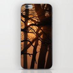 illuminated forest iPhone & iPod Skin