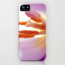 TULIP DAY II iPhone Case