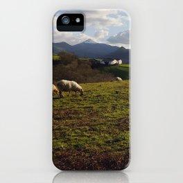 Pays Basque iPhone Case