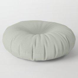 desert sage Floor Pillow
