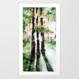 Light in the woods Art Print