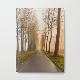 Misty Tree Road | Foggy Morning in Belgium | Landscape and Nature Photography Art Print Metal Print