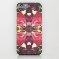 Sunset of Roses Slim Case iPhone 6s