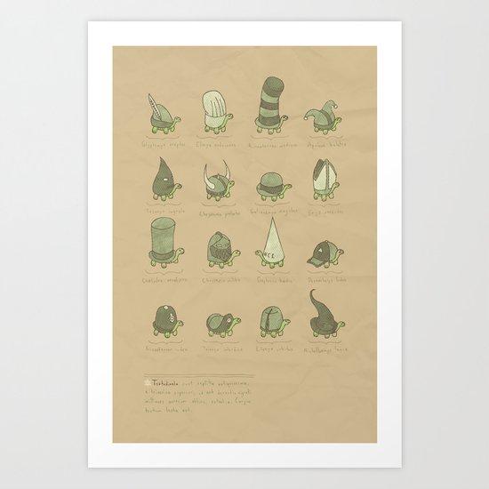 A Study of Turtles Art Print