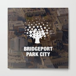 Bridgeport Park City Metal Print