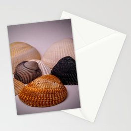Different color shell Stationery Cards