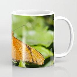 Julia Heliconian Dryas Julia Butterfly Coffee Mug