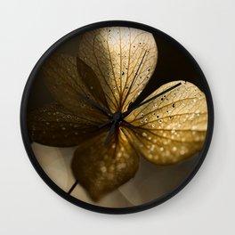 Autumn Scene - Dry Petals with Golden Sunset Light #decor #society6 #buyart Wall Clock