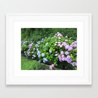 kobe Framed Art Prints featuring Flowers in Kobe by Michelle Brand