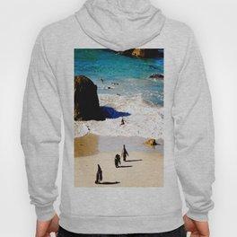 Boulders Beach Penguins Hoody