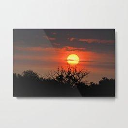 Eagle Nest Sunrise Metal Print