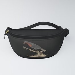 Bird Biodiversity Fruitcrow Drawing Fanny Pack