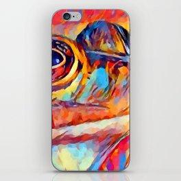 Frog Watercolor iPhone Skin