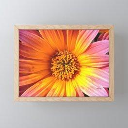 A March 1st Colorburst Framed Mini Art Print