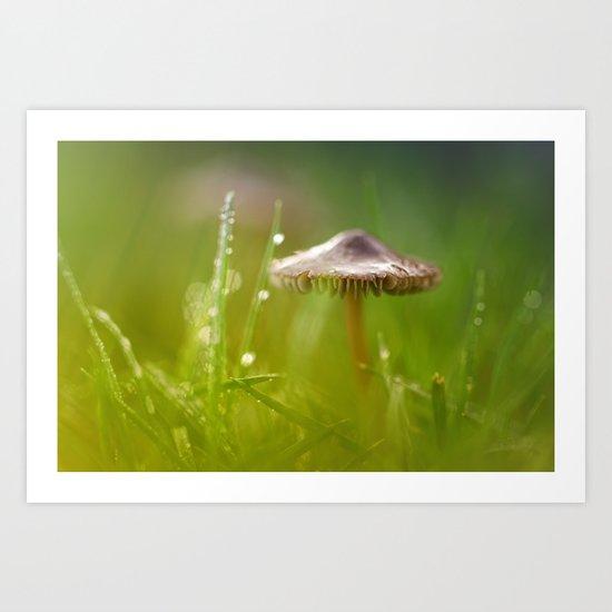 Mesmerizing Mushroom.... Art Print