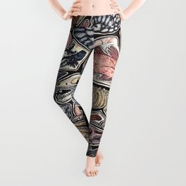 Fossils for history, dinosaur and archaeology lovers Leggings