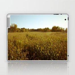 Corn Maize Laptop & iPad Skin