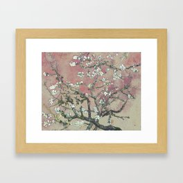 Almond Blossom - Vincent Van Gogh (pink pastel and cream) Framed Art Print