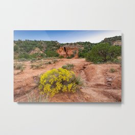 Palo Duro Canyon Cave and Wildflowers Metal Print