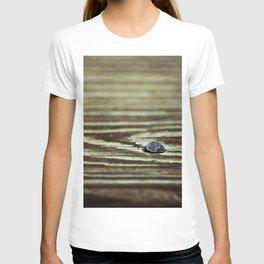 Wood Grain Texture T-shirt
