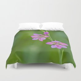 Beauty in nature, wildflower Gladiolus illyricus Duvet Cover