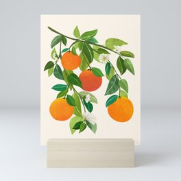 Oranges and Blossoms II / Tropical Fruit Illustration Mini Art Print
