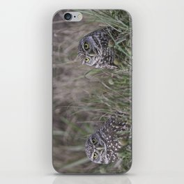 Burrowing Owl pair iPhone Skin